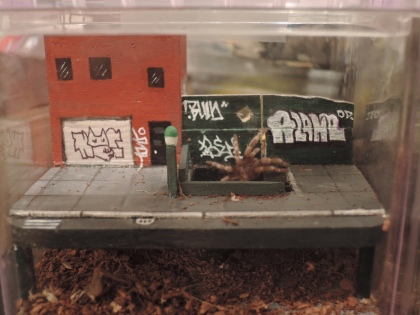 AloneOne - Tarantula diorama 2016 1.jpg