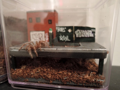 AloneOne - Tarantula diorama 2016 3.jpg