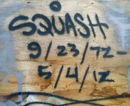 AloneOne - Squash RIP 542012